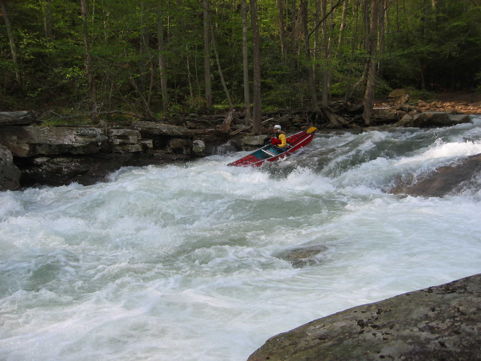 Lou Campagna in Bridge Rapid (Photo by Scott Gravatt - 4/27/04)