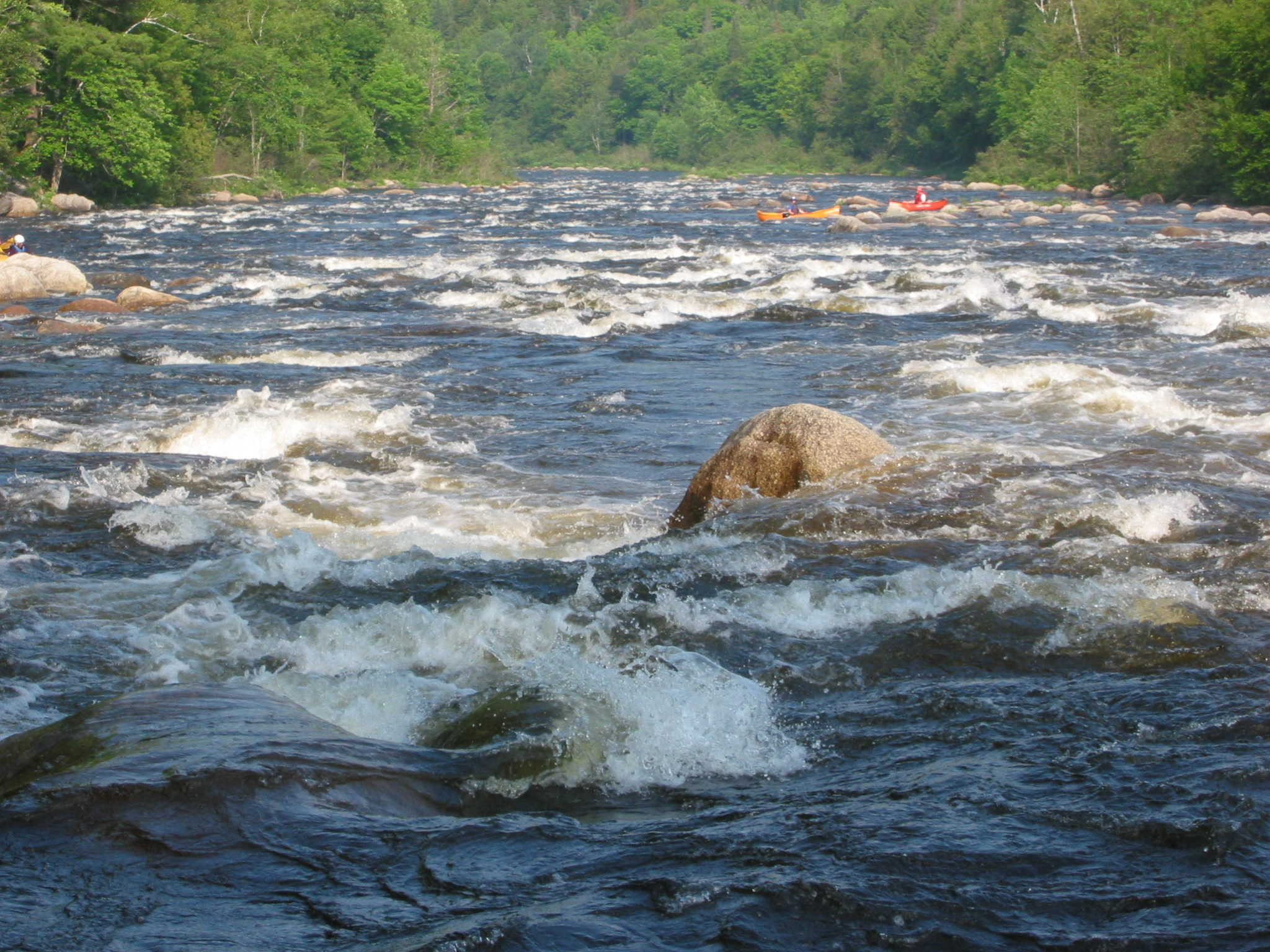 Typical rapids on the Dead at 2,400 cfs